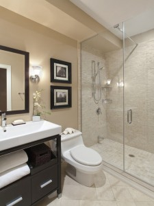 8a817d680d23fb9a 3678-w500-h666-b0-p0--transitional-bathroom